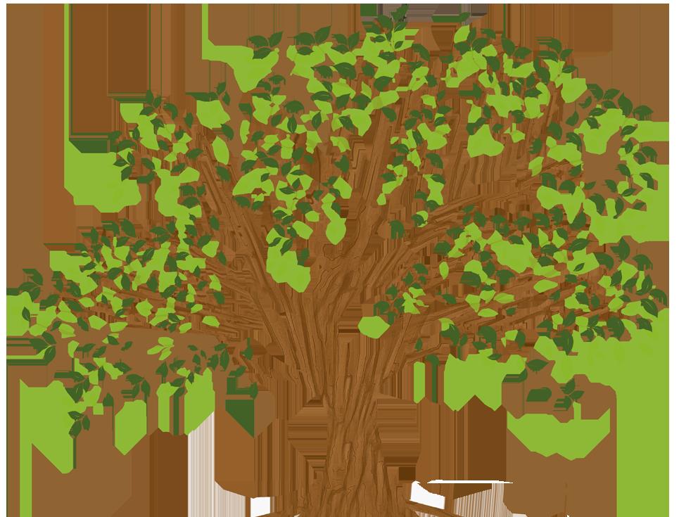 nwlpc-tree-top