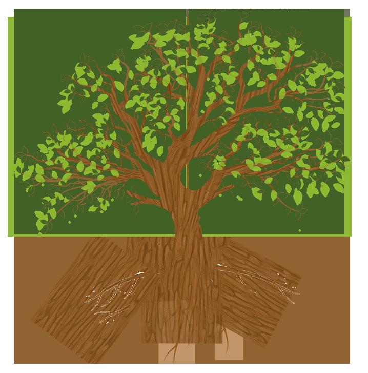 tree-full-smaller